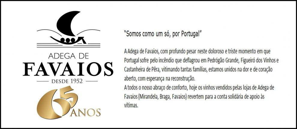"""""""Somos como um só, por Portugal"""""""